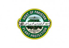 Govt. of Pakistan Plant Protection